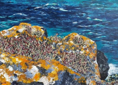 sea rock 2 Erna van der Veen